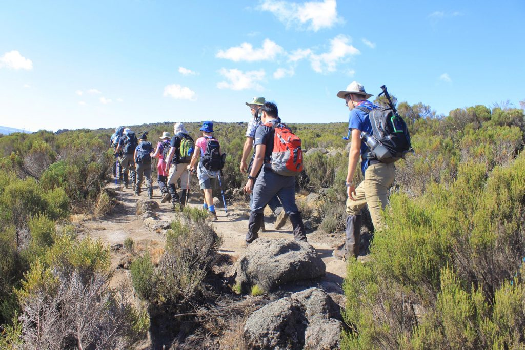 Rongai route 6 days is one of Kilimanjaro's easiest routes.This route is located on the Northern side of Mt.Kilimanjaro with a spectacular landscapes