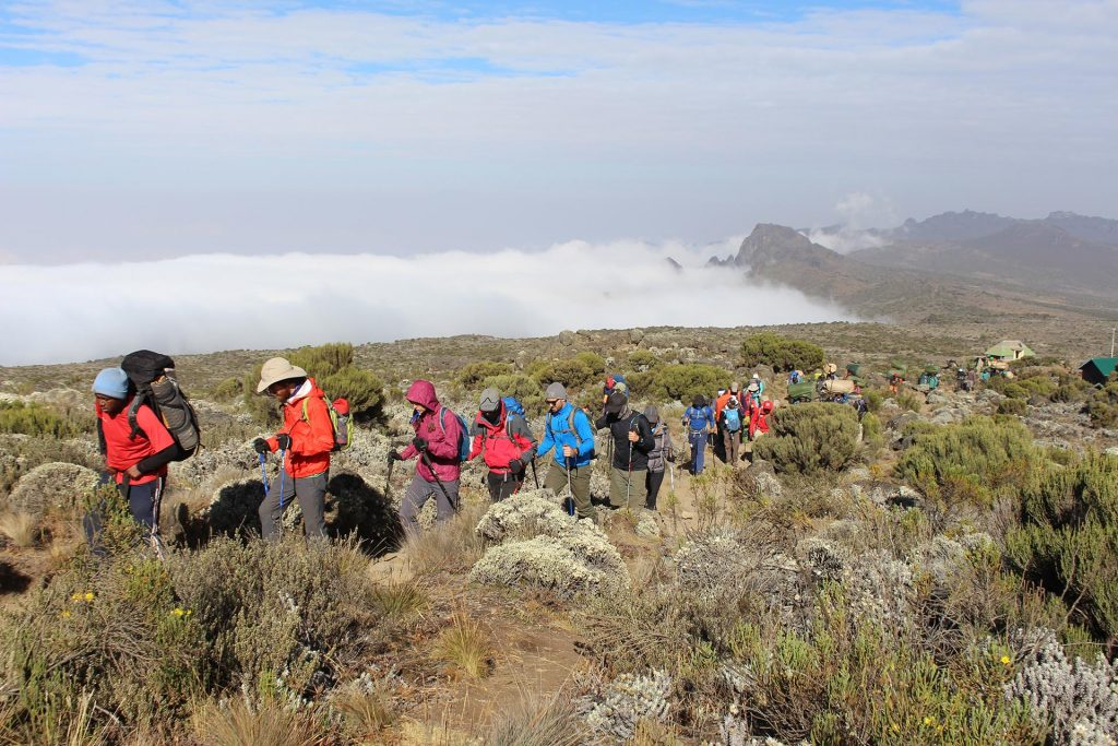 Rongai route 7 days is one of Kilimanjaro's easiest routes.This route is located on the Northern side of Mt.Kilimanjaro with a spectacular landscapes