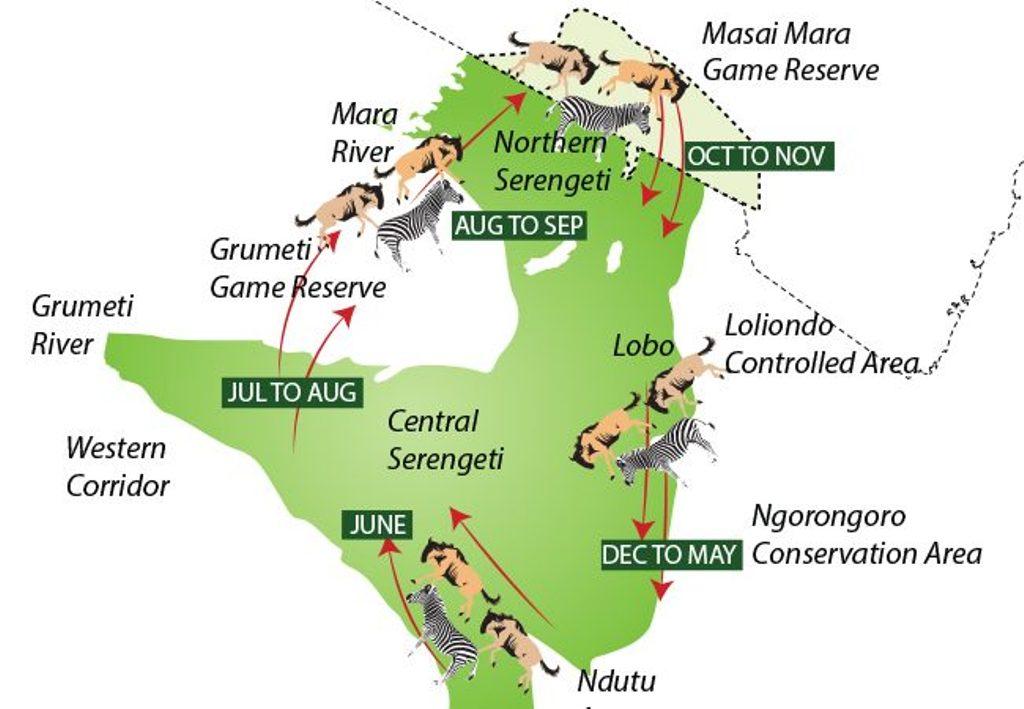 Serengeti-great-migration-map